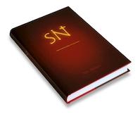 SINT - E. Ruiters (ISBN 9789079107018)