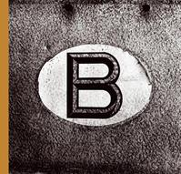 Belgicum - Stephan Vanfleteren, David van Reybrouck (ISBN 9789020971217)