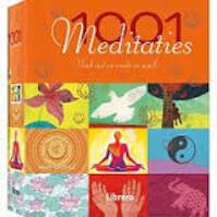 1001 meditaties (ISBN 9789089985446)