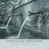 Verstild en versteend = Weathered witness - W. Degrande, P. Goossens (ISBN 9789058264688)