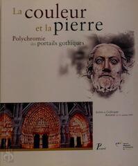 La couleur et la pierre - Denis Verret, Delphine Steyaert (ISBN 9782708406285)