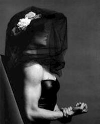 Lady Lisa Lyon - Robert Mapplethorpe, Bruce Chatwin (ISBN 9783888141133)