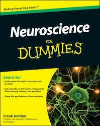 Neuroscience for Dummies - Frank Amthor (ISBN 9781118086865)