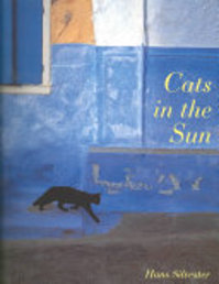 Cats in the Sun - Hans Silvester (ISBN 9780811810937)