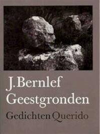 Geestgronden - J. Bernlef (ISBN 9789021451923)