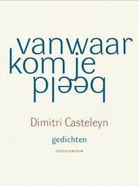 Vanwaar kom je beeld - Dimitri Casteleyn (ISBN 9789056550769)