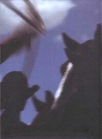 Cowpuncher - Kurt Markus - Kurt Markus (ISBN 9780967732114)