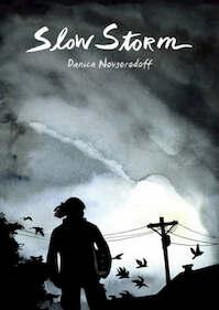 Slow Storm - Danica Novgorodoff (ISBN 9781596432505)