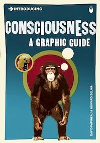Introducing Consciousness - David Papineau (ISBN 9781848311718)
