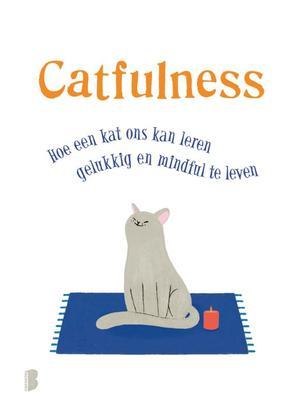 Catfulness - Paolo Valentino