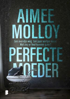 Perfecte moeder - Aimee Molloy