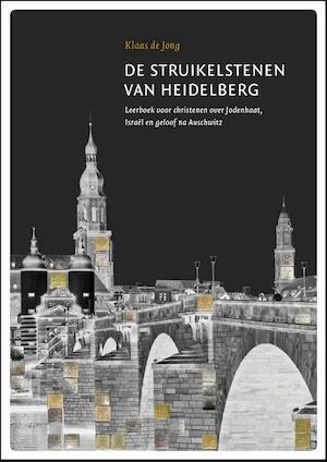 De struikelstenen van Heidelberg - Klaas de Jong