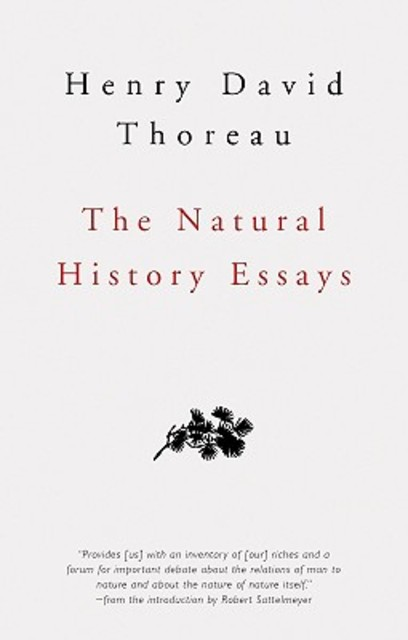 Tone and syntax and thoreau and essays