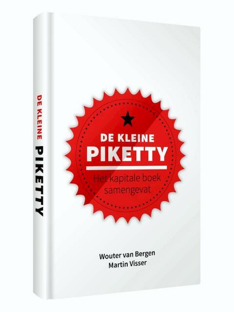 De kleine Piketty - Wouter Van Bergen, Martin Visser
